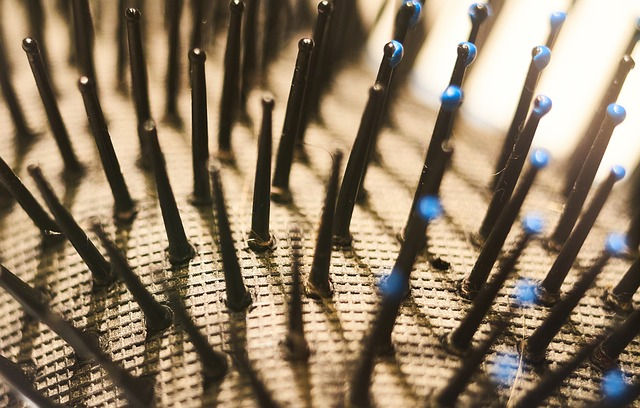 hair brush bristles up close