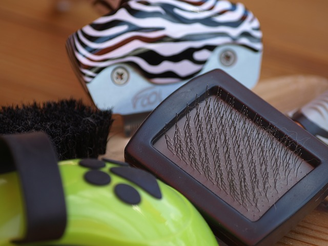 teach your puppy about grooming
