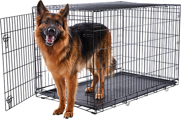 frisco heavy duty single door dog crate