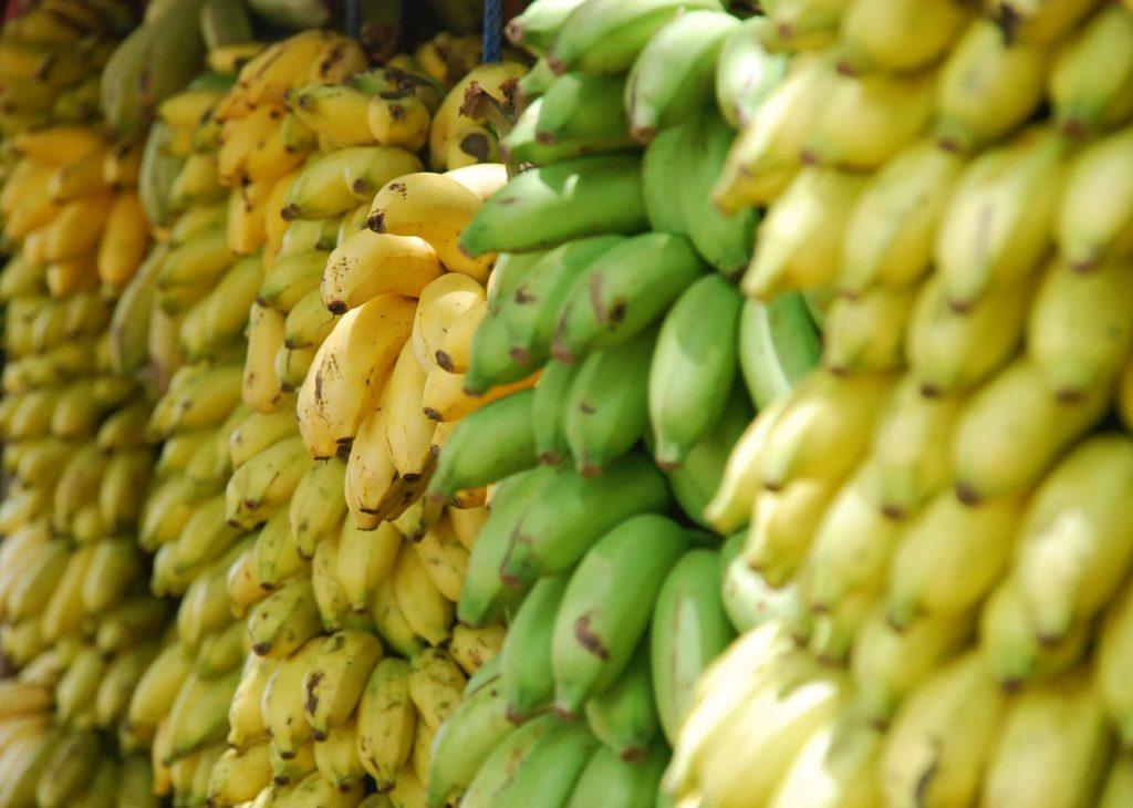 bunch of yellow and green bananas