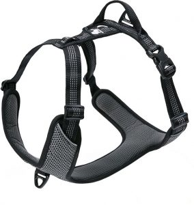 dog harness with front clip and back clip with control handle in gray color