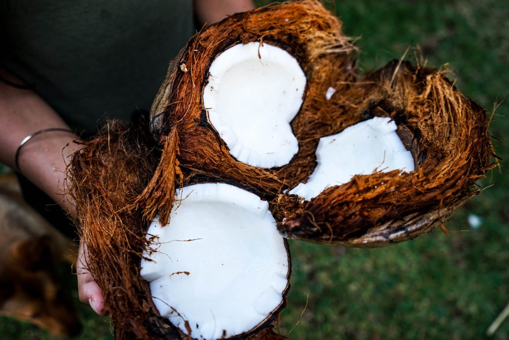cracked open coconut showing the white flesh inside