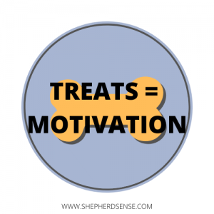 treats equal training motivation for your gsd