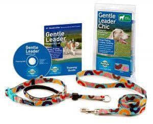 Gentle Leader complete head halter training package