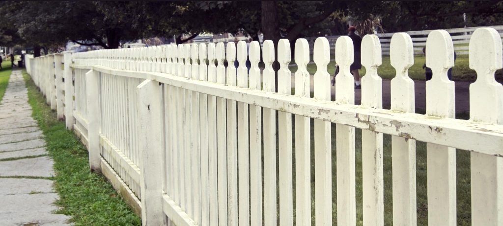 increase the height of the fence to prevent jumping
