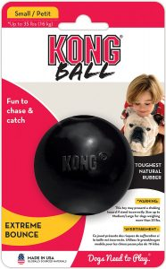 KONG Extreme Ball Dog Toy for heavy chewing
