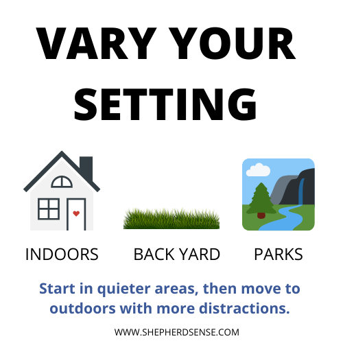 vary your dogs training setting