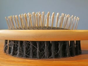 dual sided pin and bristle brush