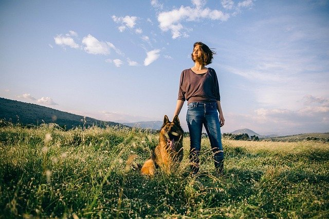 everyday german shepherd leadership