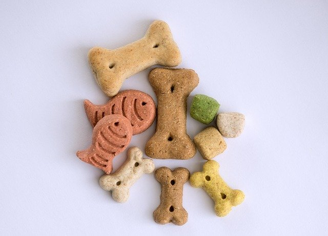 increase positive obedience training for your puppy with treats