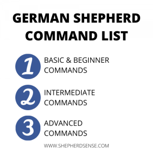 german shepherd command list