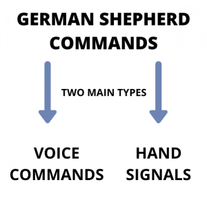 types of german shepherd training commands listed
