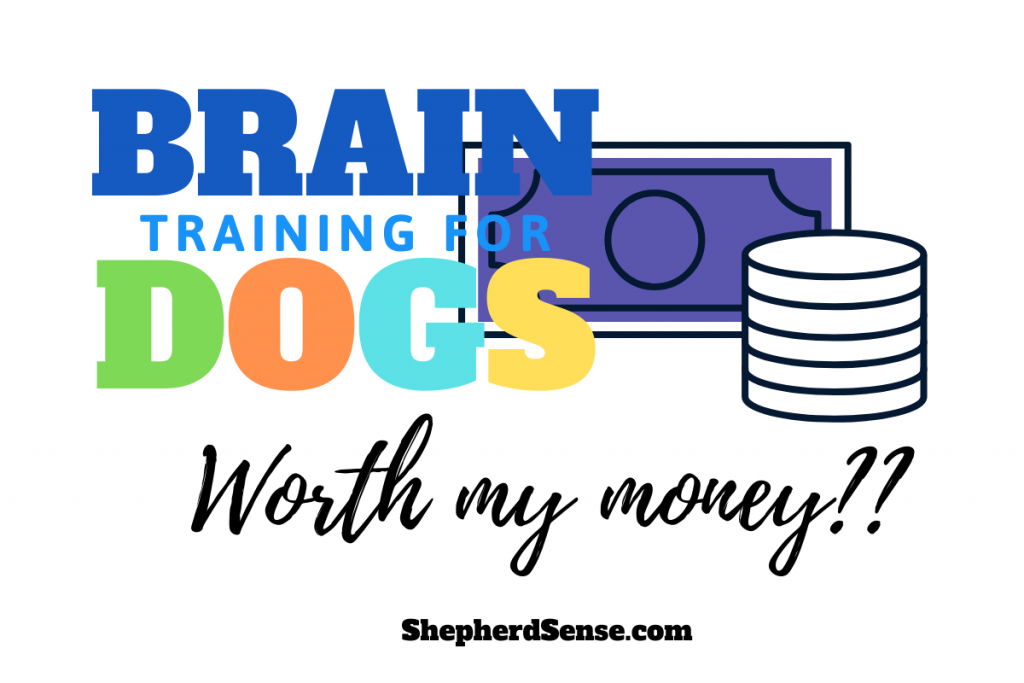 Is Brain Training for Dogs worth my money?