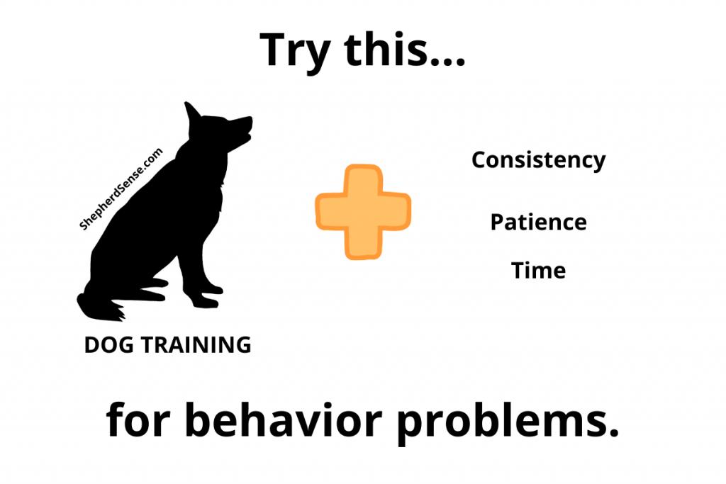 behavior problems and german shepherd training