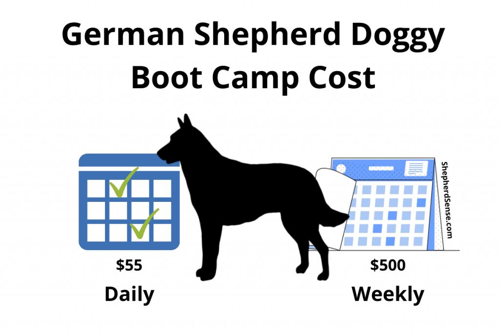 german shepherd doggy boot camp cost