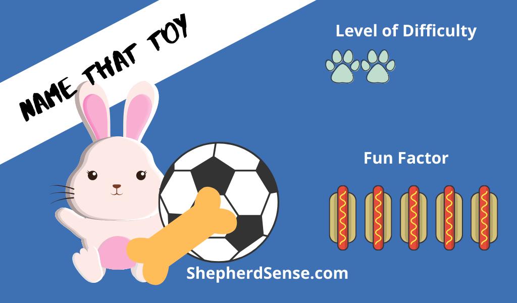name that toy dog training game
