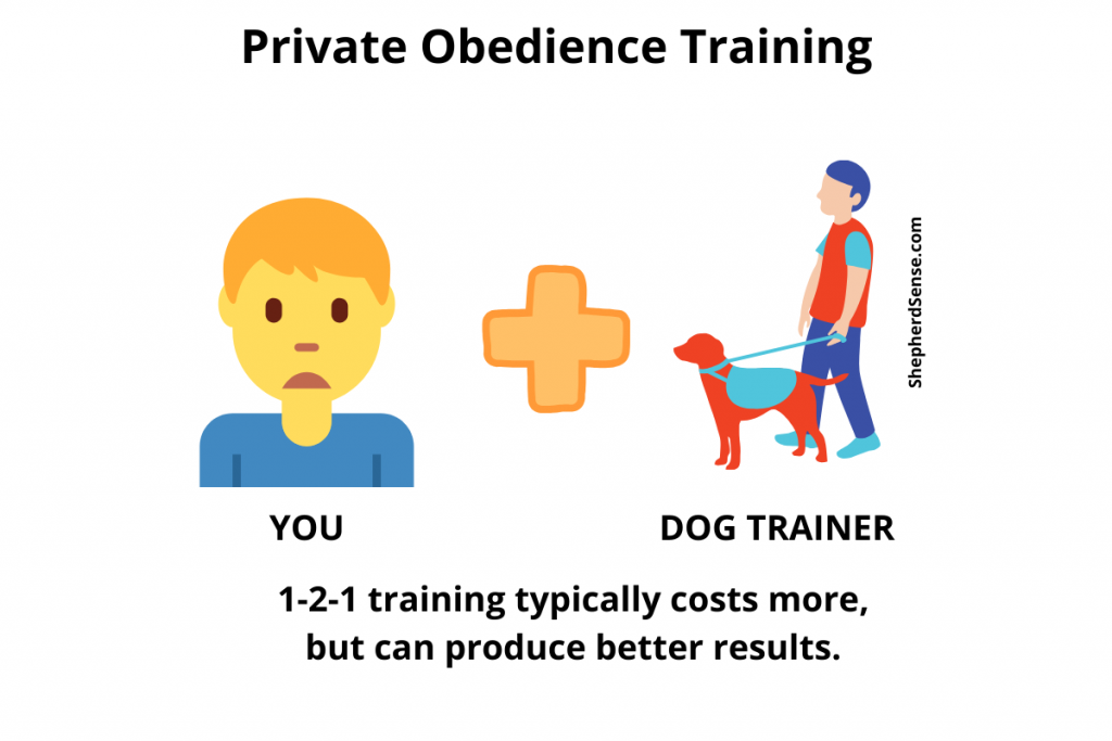 private obedience lessons for your german shepherd with a dog trainer