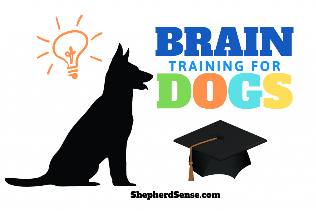 what is brain training for dogs?