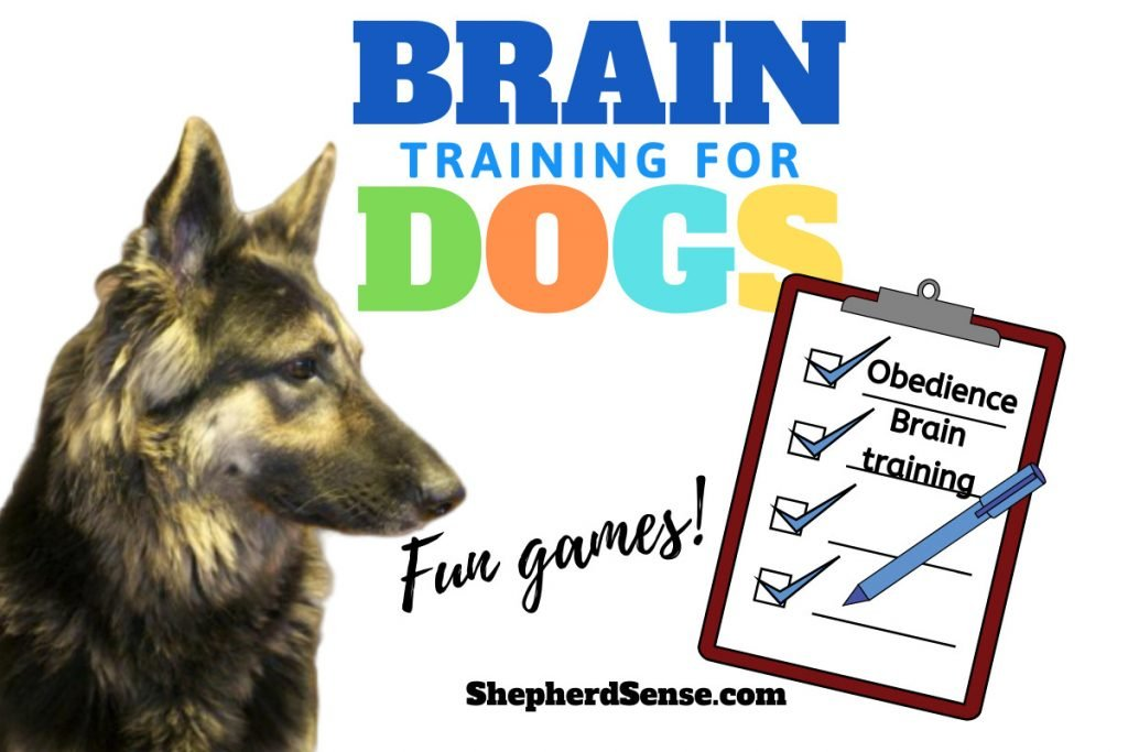 brain training for german shepherds
