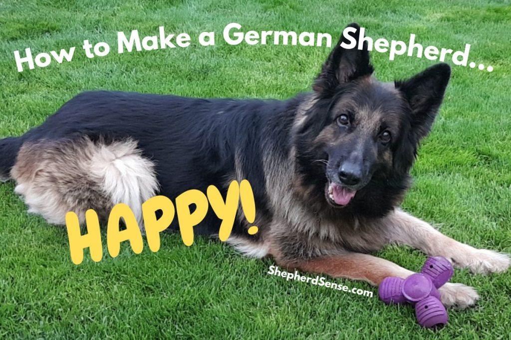my happy german shepherd outside