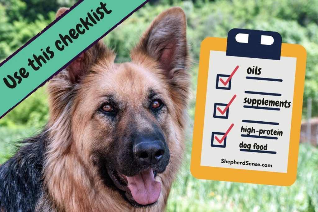 how to make a german shepherd's coat shiny and healthy