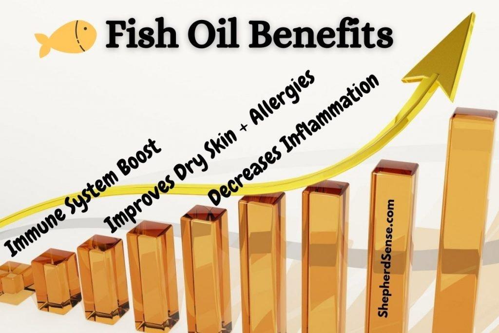 benefits of fish oil for your german shepherd