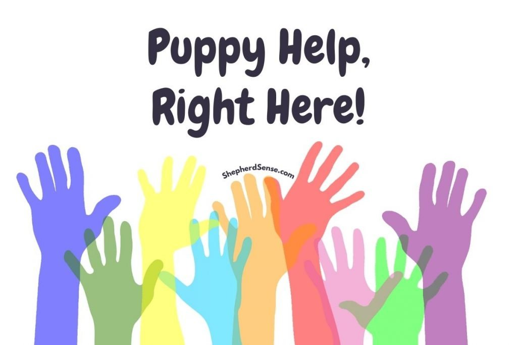 help with your german shepherd puppy