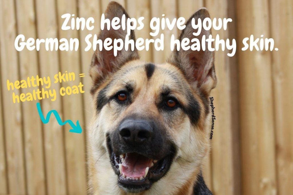 zinc supplement for healthy skin