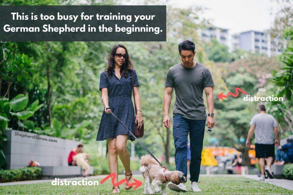 choose your training area carefully