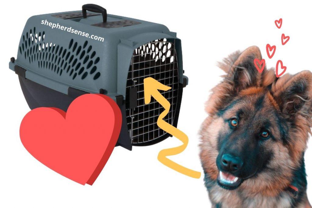 crate training speeds up potty training a german shepherd puppy