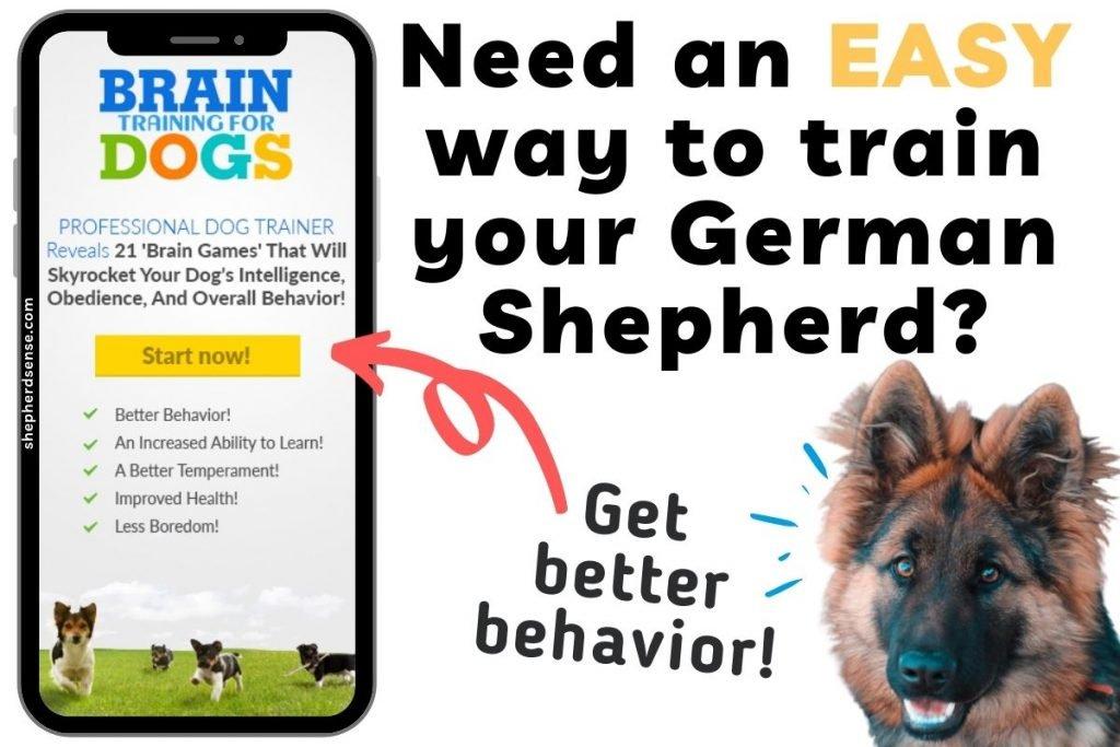 german shepherd training for bad behavior