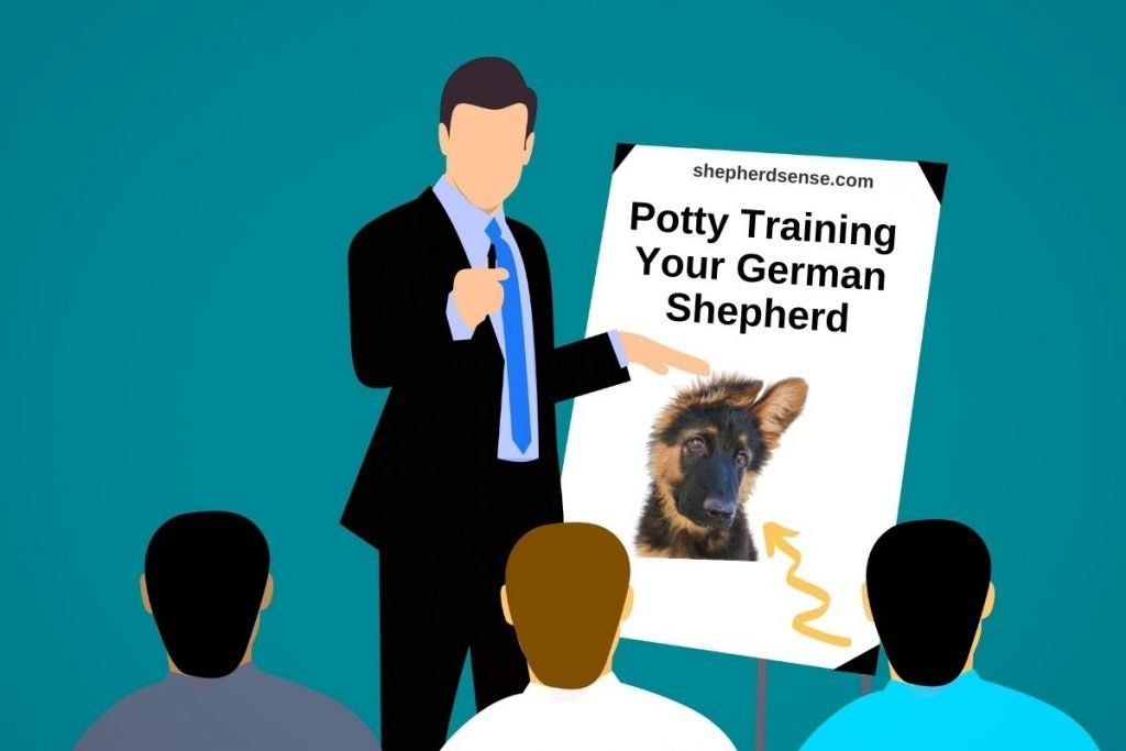 german shepherd potty training tips