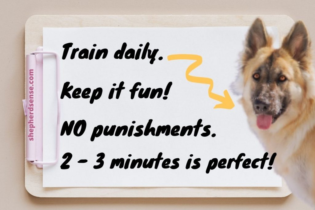 owning a german shepherd means daily training