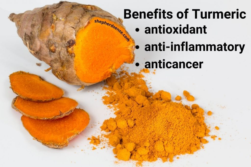 add turmeric for your german shepherd's joint pain