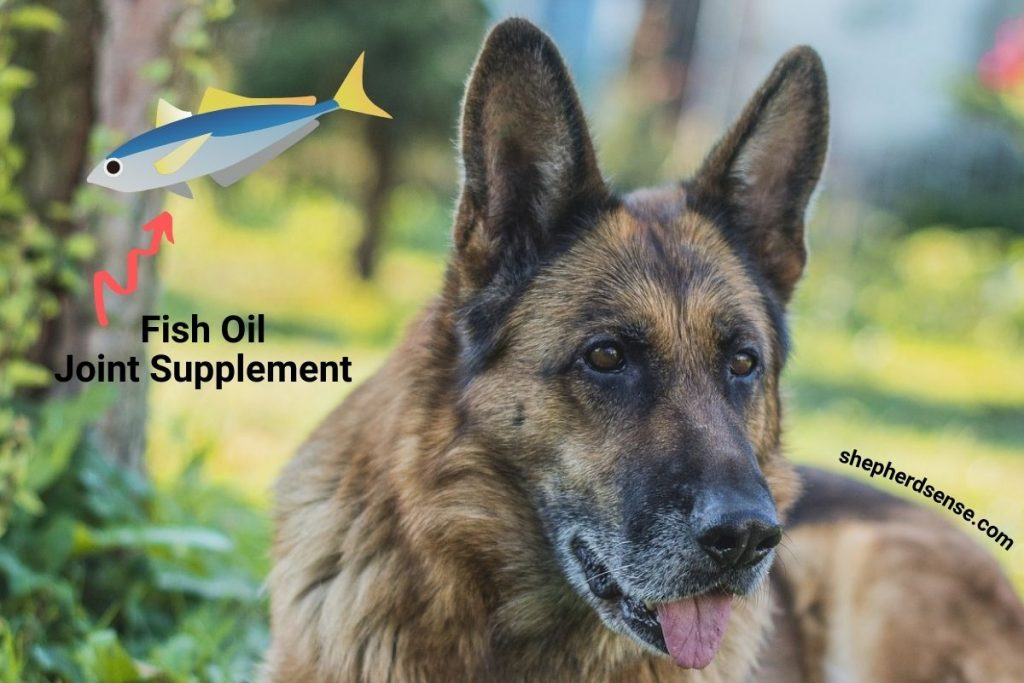fish based oil supplements for hip pain