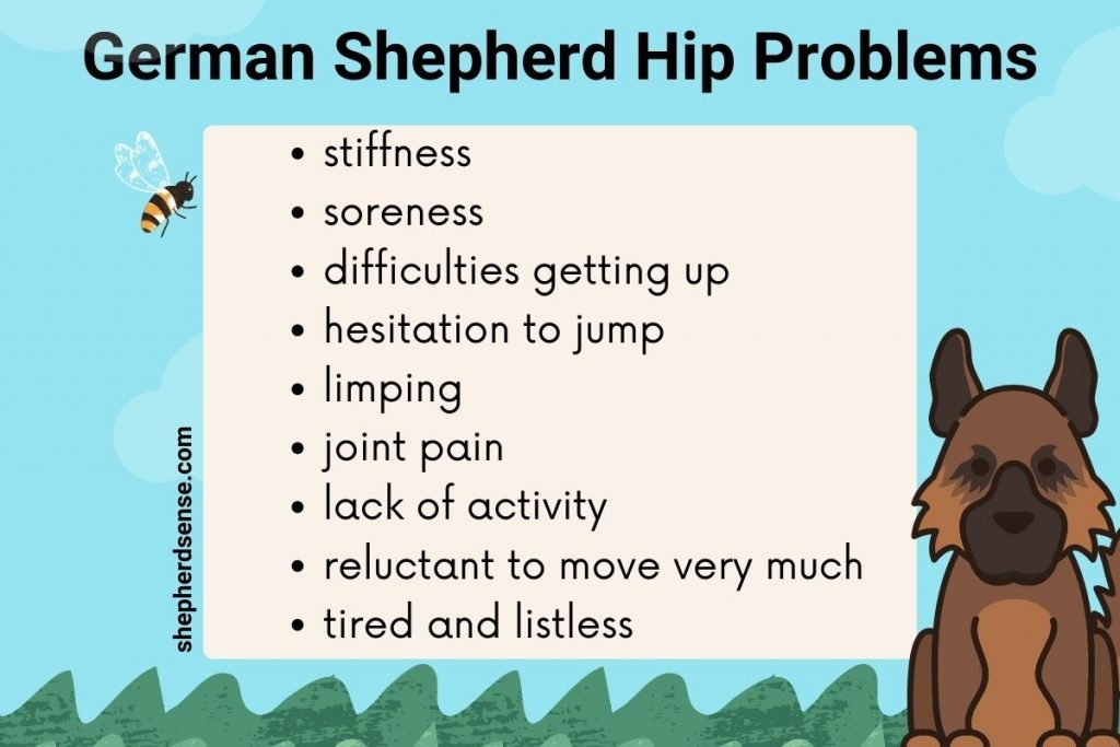 german shepherd hip problems