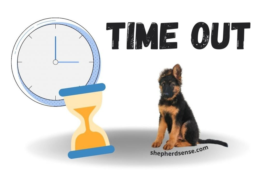 how to discipline a german shepherd puppy using time outs