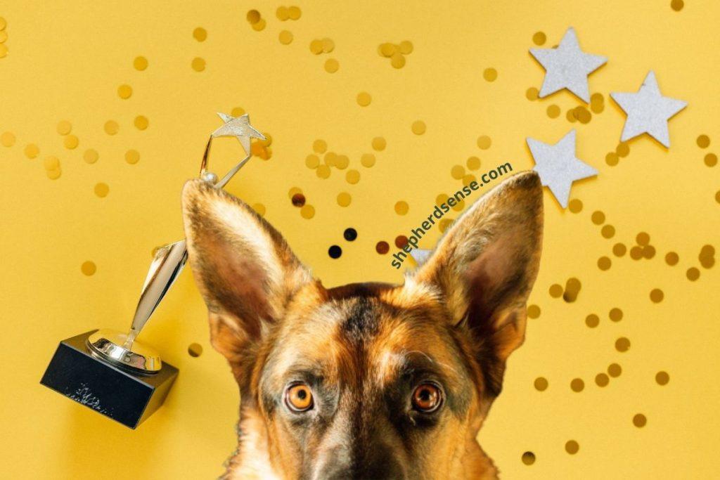 use reward based german shepherd training