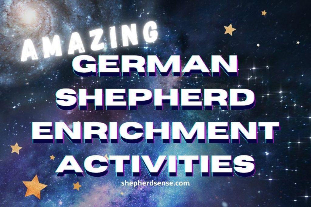 german shepherd enrichment activities