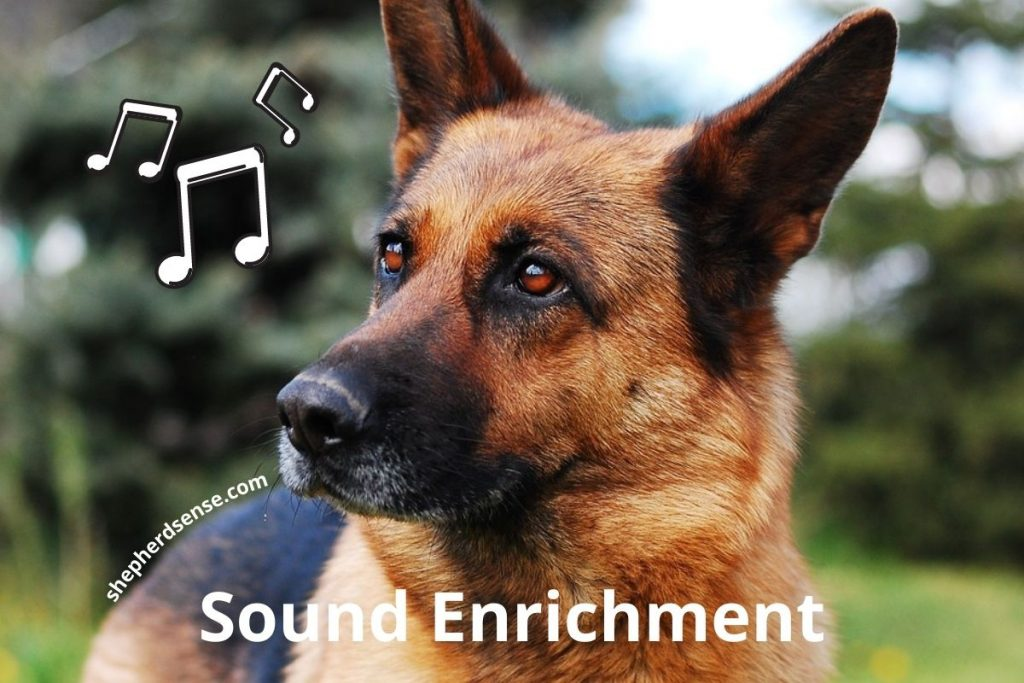 auditory (sound) enrichment for german shepherds