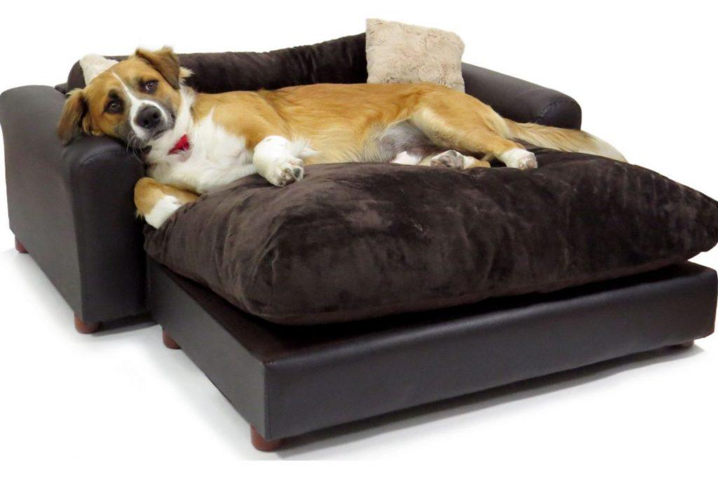 best sofa for german shepherd
