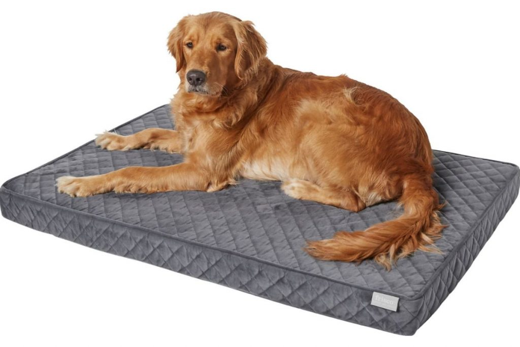 frisco orthopedic dog bed extra large