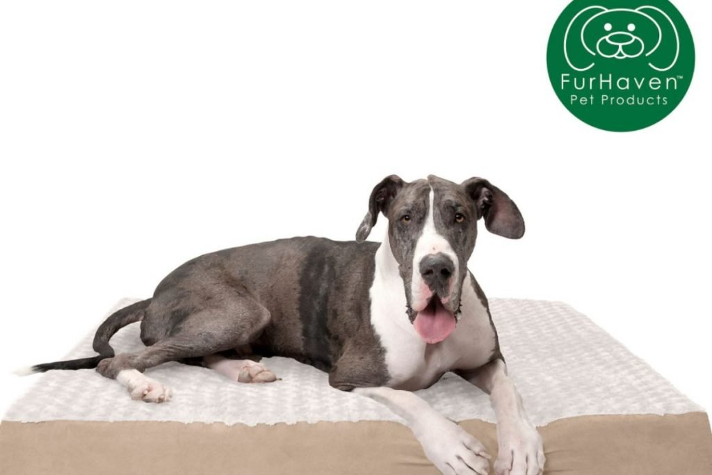furhaven plush orthopedic dog bed