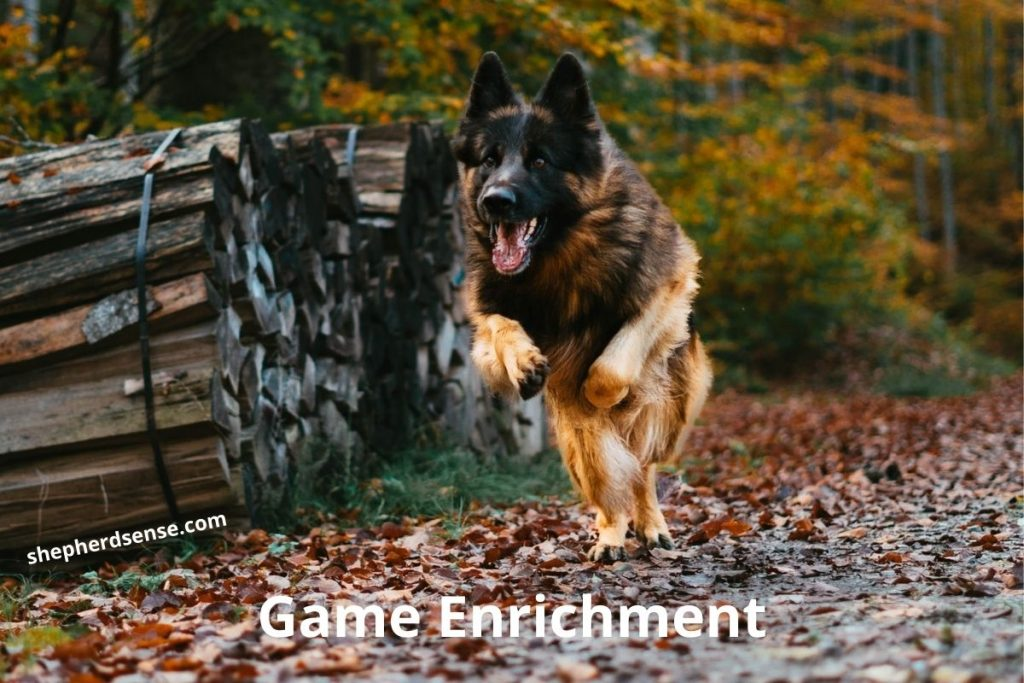 game enrichment for a gsd