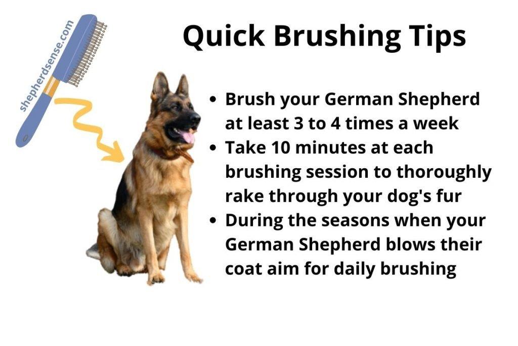 how often should you brush a german shepherd
