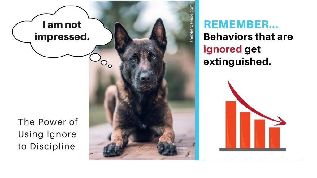 ignoring bad behavior in your gsd