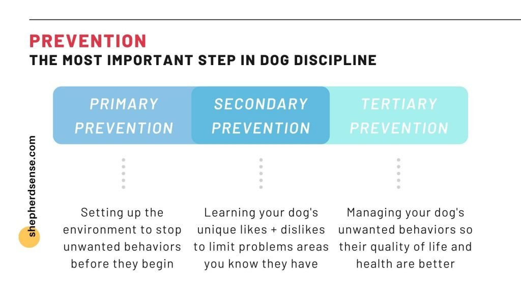 prevention: the most important step in gsd discipline