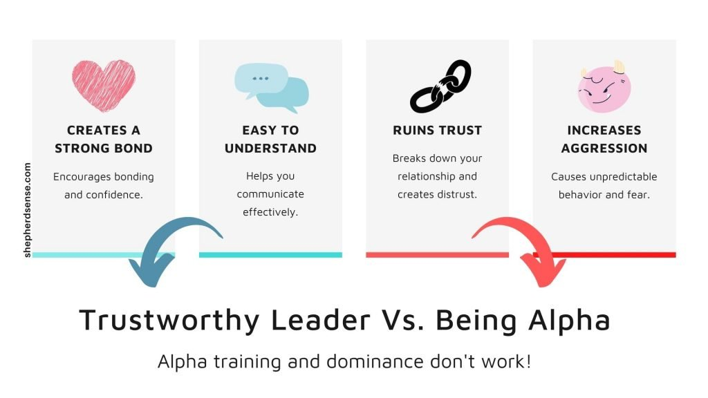 leadership is better for discipline rather than being the alpha
