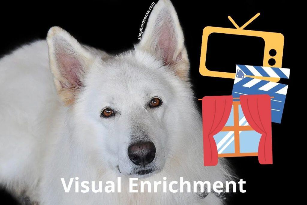 visual enrichment for german shepherds