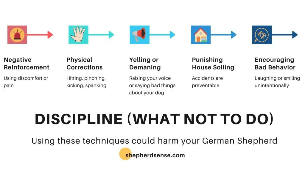 what not to do when disciplining your gsd
